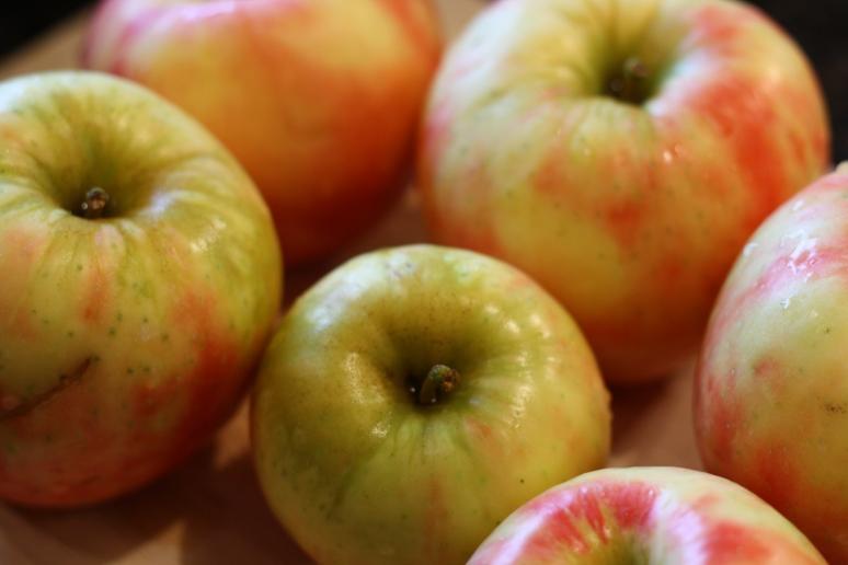 Beautiful Honeycrisp Apples